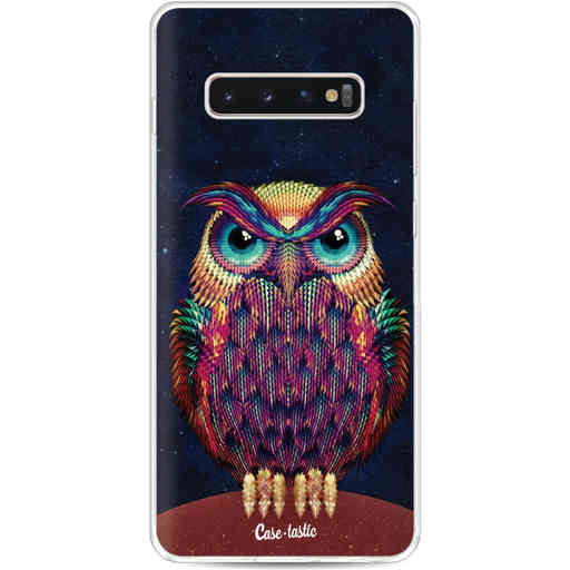 Casetastic Softcover Samsung Galaxy S10 Plus - Owl 2